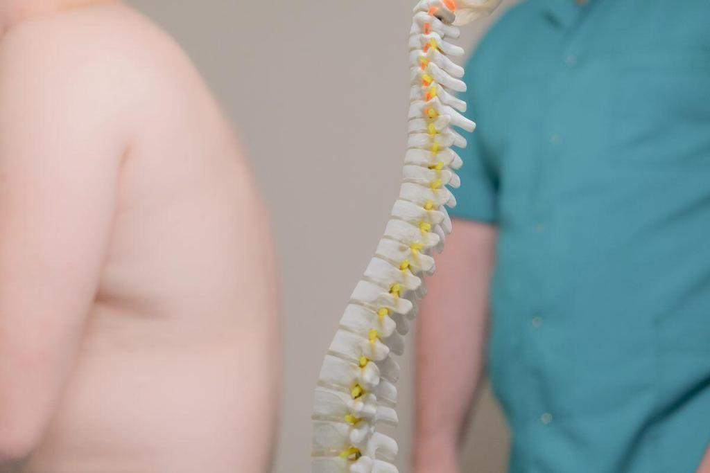 Симптомы и виды опухолей позвоночника и спинного мозга